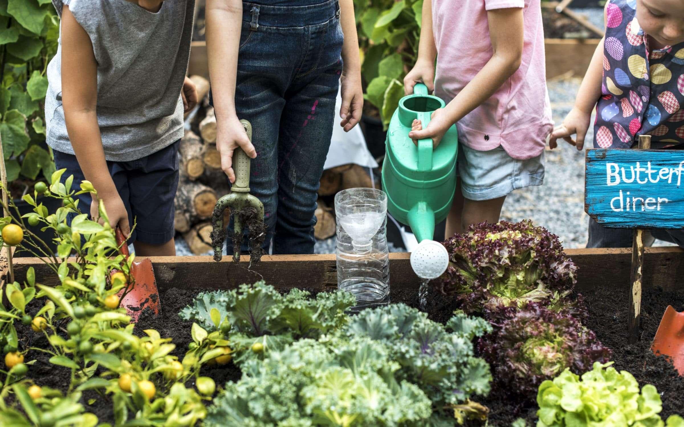 A gardening volunteer group