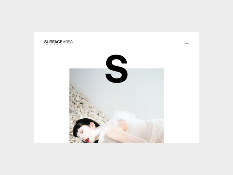 Surface Area website screenshot